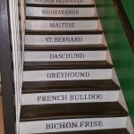 novel stairs