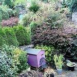 The Secret Garden!