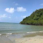 Cape Trip beach - where the rainforest gets the reef