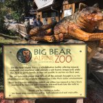 Big Bear Alpine Zoo at Moonridge Foto