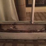 Flaking vinyl on bed headboard, cracked and broken sink, worn bathtub and rotted door-hastily pa