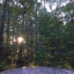 Foto van Bandy Creek Campgrounds
