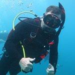 Foto de Dressel Divers