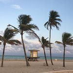 Photo de Hollywood Beach