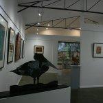 Wacky Bird Gallery