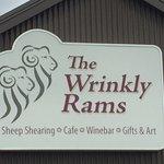 Photo de The Wrinkly Ram