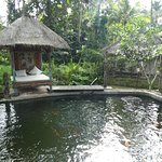 One of 2 pools at Ubud Sari