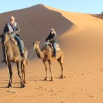 camel trekking in merzouga desert its the biggest attraction of morocco  thx berberwaymoroccotou