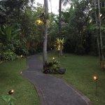 Photo of Komaneka at Monkey Forest