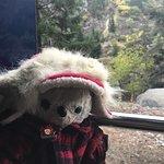 Foto de Banff Rocky Mountain Resort
