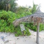 Coral Reef View Inn Foto