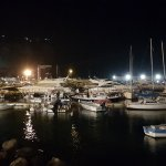 local harbour at night time