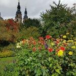 Dahliengarten Foto