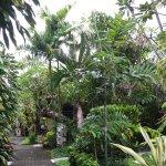 Photo of Taman Harum Cottages
