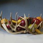 antler fruit bowl made from brown mule deer antler