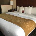 Zdjęcie Comfort Suites Southwest