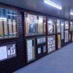 Donald Bradman display