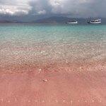 Foto Pantai Pink