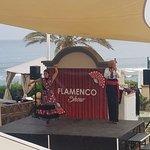 Flameno show!
