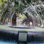 the fountain of the coyotes or coyoacan in Spanish
