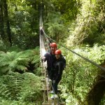 One of the pictures that Rotorua Canopy tours provide for free download on their website