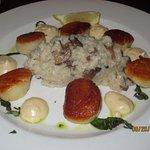 scallops w/mushroom risotto