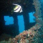 Adventure Moreton Island Foto