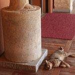 Ephesus Museum Cat pose 2