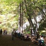 Photo of Yutaki Waterfall