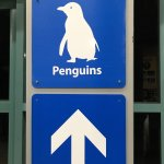 Photo of Phillip Island Nature Parks - Penguin Parade