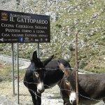 Фотография Agriturismo Il Gattopardo