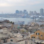 Genoa harbour from the Palazzo Rosso