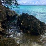Zdjęcie Jamaica Inn