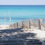 Au bord d'une longue plage de sable fin