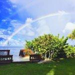 Manasota Beach Club Foto