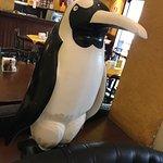 Photo of Pinguim