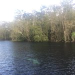 Photo of Silver Springs State Park