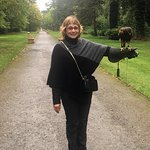 With Lima, the Peruvian Harris Hawk!