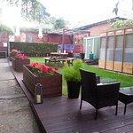 The pleasant rear garden