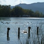 Photo de Lake Banyoles
