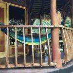 Foto de Tree House Lodge