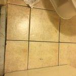 floors very dirty