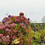 Turtle Rocks Inn Foto
