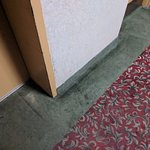 Carpets by the elevators.