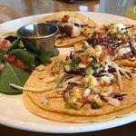 Tilapia tacos needed some salt.