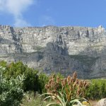 Table Mountain view room