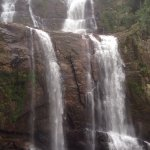 Photo of Lover's Leap Falls