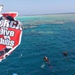 orca diving betty e miky ottobre 2017!!top!!
