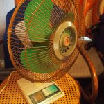 The fan we were given!