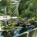 Photo of Naples Botanical Garden